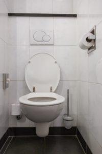 toilet-repair-and-replacement-michigan